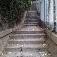 Secret Stairs- Los Feliz