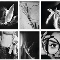 Stivers School for the Arts Photography Auction