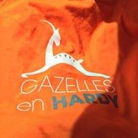 les GAZELLES en HARDY