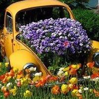 Die Tuin Simfonie/ The Garden Symphony