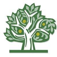 Promisetown Child Care Ministry & Preschool