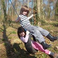 Forest Adventure Days