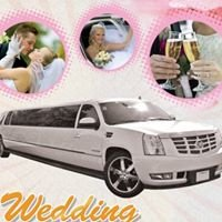 Chicago Wedding Limousine & party Buses