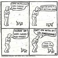 Pawlicious Pet Treats