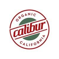 Calibur SF