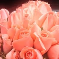 Fuller Flowers - Leesburg and Fairfax Costco Locations