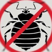 Cook's Termite & Pest Control Inc.- Columbus, Ohio