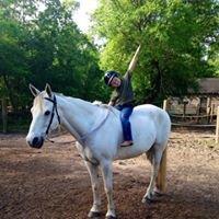 Good Horse LLC - Private Beginner Riding Lessons