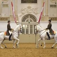 Genesis Equestrian Center