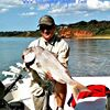 Mornington Boat Hire, Bait and Tackle