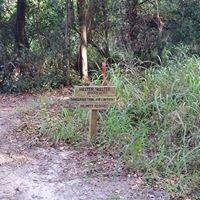 Mount Dora Mountain Bike Trail