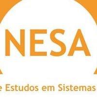 Núcleo de Estudos em Sistemas Agrícolas - NESA UFLA