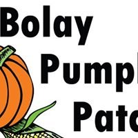 Bolay Pumpkin Patch