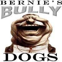 Bernie's Bully Dogs