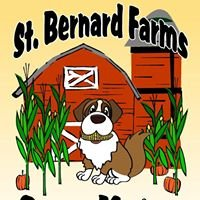 St. Bernard Farms Corn Maze & Pumpkin Patch
