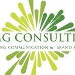 WMG Consulting, Inc.