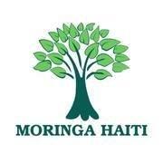 Moringa Haiti
