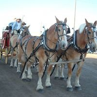 Southern Idaho Draft Horse and Mule Association