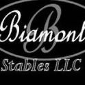 Biamonte Stables LLC