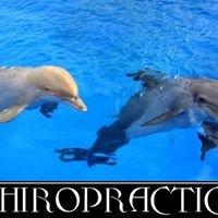 Sanibel Chiropractic, LLC
