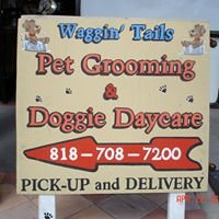 Waggin' Tails Lounge Pet Grooming/Doggie Daycare