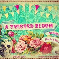 A Twisted Bloom