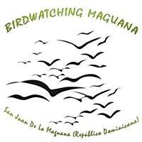 Birdwatching Maguana Ecoturismo