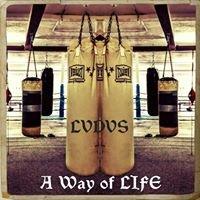 The Ludus: Martial Arts Center