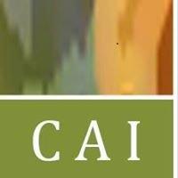 Currier & Associates, Inc.