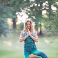 Blue Dog Yoga & Wellness