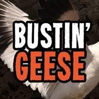 Bustin' Geese