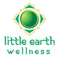 Little Earth Wellness Centre