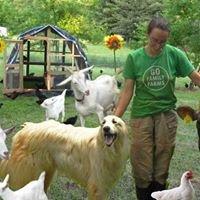 Green Chin Farm