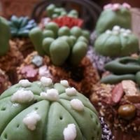 Succulent Delicacies by Design