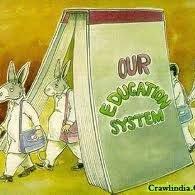 Education revolution