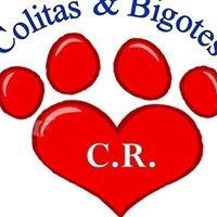 Colitas y Bigotes Costa Rica