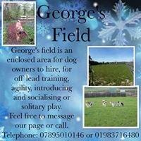 George's Field