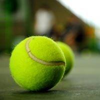 Tennis Nation
