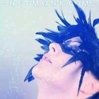 ::: NetMonk Creative Photography :::