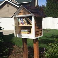 Somerset Neighborhood Little Free Library #35997