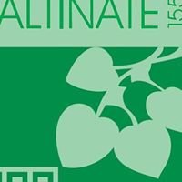 Altinate 155