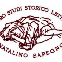 Fondazione Natalino Sapegno Onlus