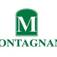 Montagnani dal 1965