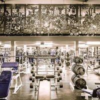Monster Gymnasium Ltd