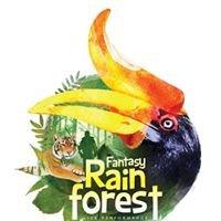 Fantasy Rainforest