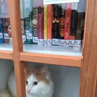 Firpo Little Free Library #35475