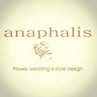 Anaphalis - Creazioni ed eventi