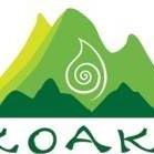 Pikoakea Therapeutic Lomi & Rehabilitation Massage