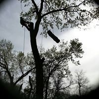 Lucas Tree Care, Inc.