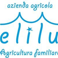 Elilu agricultura familiare